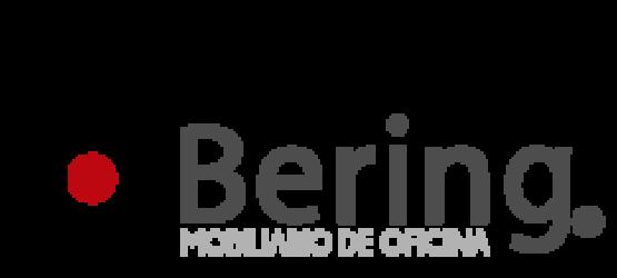 Bering Blog
